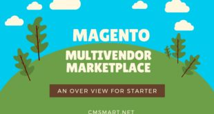 An Overview of Multivendor Marketplace for starter